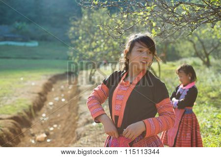 H'mong ethnic children in traditional custome in H'mong holiday.
