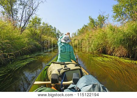 Paddling Down A Wilderness River
