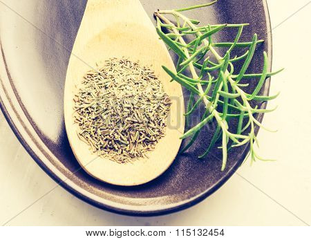 Vintage Photo Of Dry And Fresh Rosemary