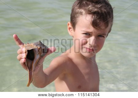 Shell with boy in background