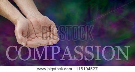 Compassion Campaign Banner