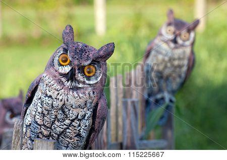 fake owls