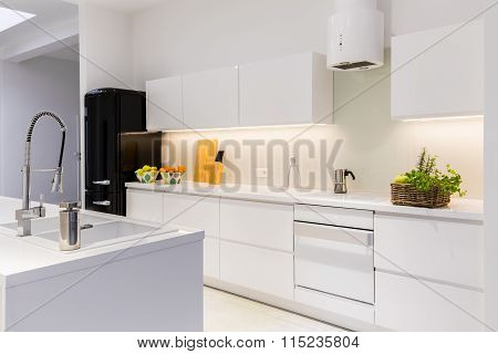 Sterile And Light Kitchen