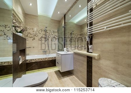 Luxurious Bathroom In Small Apartment