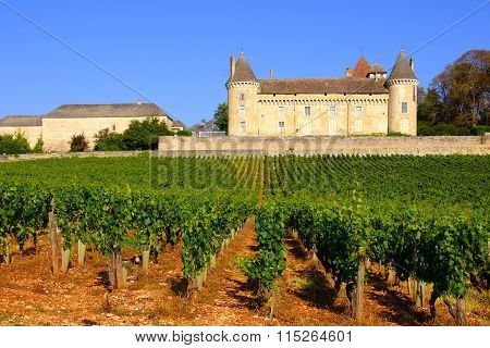 Castle amongst the vineyards of Burgundy, France
