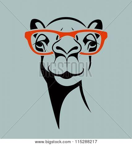 funny camel wearing glasses. vector illustration for T shirt, poster, print design.