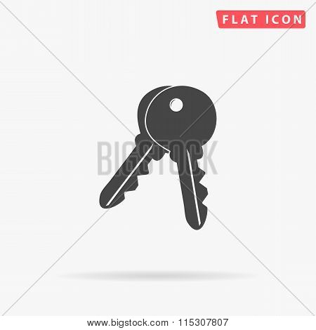 Keys simple flat icon