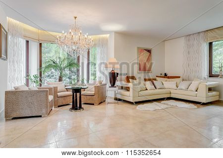 Showy And Spacious Living Room