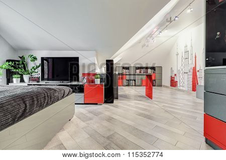 Big Contemporary Teen Room