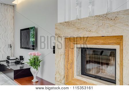 High-class Family Space With Television