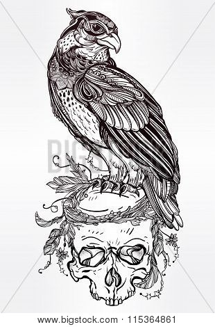 Detailed hand drawn bird of prey on a skull.