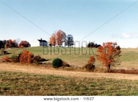 House On The Hill 1