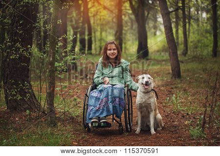 Faithful Dog With Its Owner In A Wheelchair