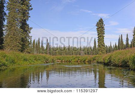 River Through A Wild Marshland