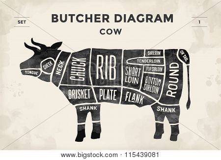 Cut Of Meat Set. Poster Butcher Diagram And Scheme - Cow. Vintage Typographic Hand-drawn. Vector Ill