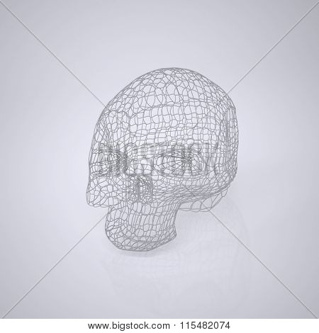 Skull - Head