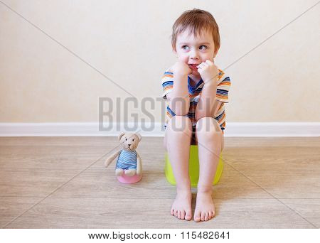 potty training toddler and teddy