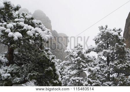 George Washington Profile In Snow