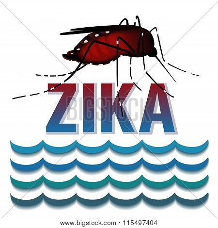Zika Virus, Mosquito, Standing Water, Graphic Illustration.