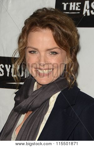 LOS ANGELES - JAN 18:  Dina Meyer at the Little Dead Rotting Hood Premiere at the Laemmle NoHo 7 on January 18, 2016 in North Hollywood, CA