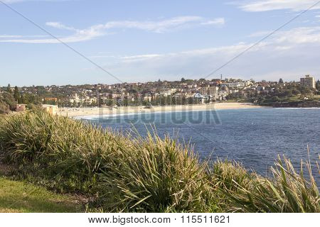 View of Coogee Bay