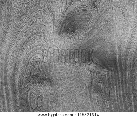 Wood Texture Grey Silver Veneer Abstract Natural Grain Pattern For Background Image