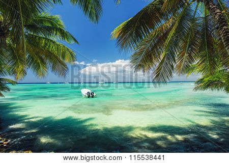 Exotic Beach In Dominican Republic. Palm Trees On The Sandy Shore And Boats In The Sea.