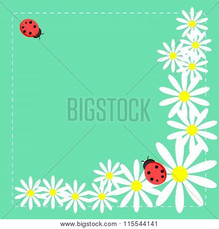 Meadow with daisies and ladybag
