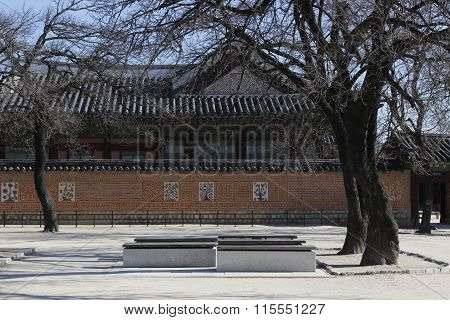 Gyeongbok Palace Sitting Under Branch Tree In Winter Historic In Korea