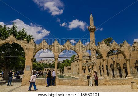 URFA, TURKEY - JUNE 8, 2015: Holy Lake is a holy travel destination fish lake and Halil-ur Rahman Mosque.The pool is at a site where Nimrod wanted to burn Abraham as a sacrifice.