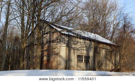 Tree covered barn