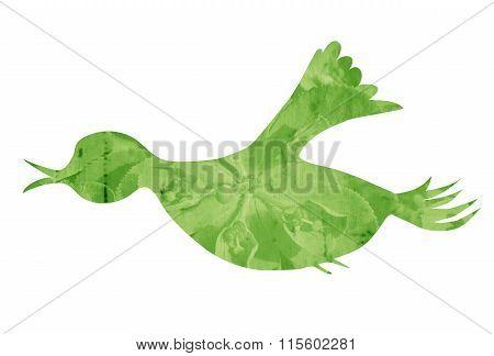 Grass flying songbird