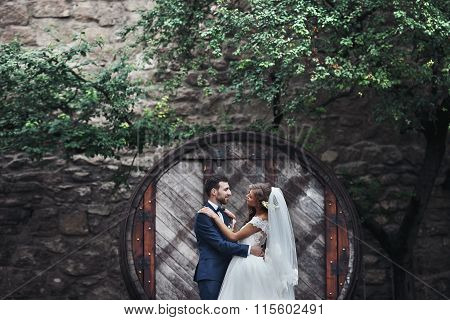 Happy Couple Of Newlywed Valentynes Hugging And Posing With Hobbit Style Round Wooden Door Backgroun