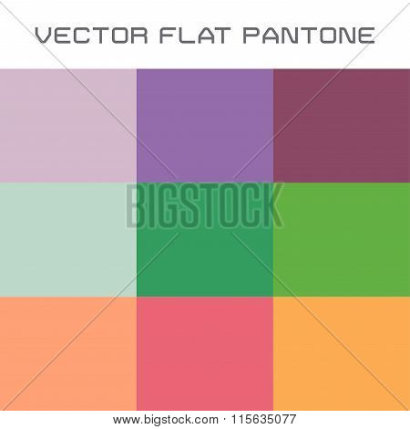 flat pantone color swatch