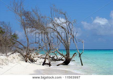 Elbert Cay, Los Roques, Venezuela
