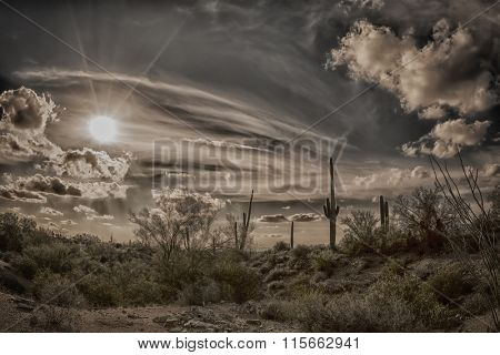 An image of a sunset at Superstition desert in Arizona shows the rugged detail of a dry wilderness and saguaro cactus.