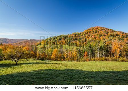 Falls Foliage In Vermont Countryside.