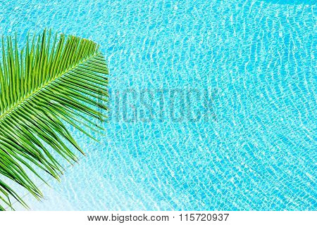 Summer Background At Water Texture Swimming Pool