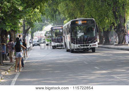 Public Bus Transportation In Manaus, Brazil