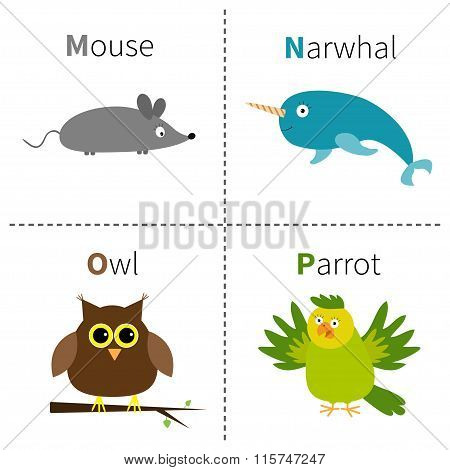 Letter M N O P Mouse Narwhal Owl Parrot Zoo Alphabet. English Abc With Animals Education Cards For K
