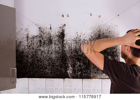 Man shocked to mold a kitchen cabinet. poster