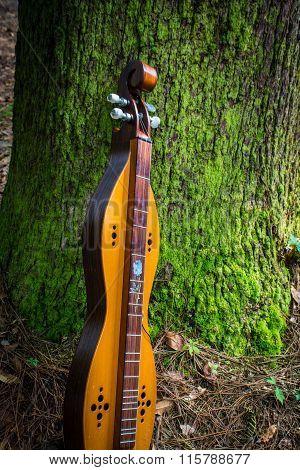 dulcimer mountain music instrument