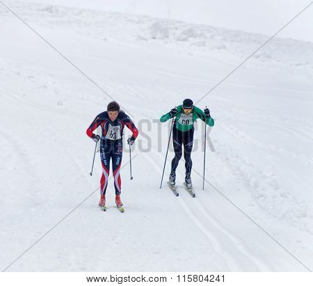 STOCKHOLM - JAN 24 2016: Two cross country skiing men sprinting side by side at the Stockholm Ski Marathon event January 24 2016 in Stockholm Sweden