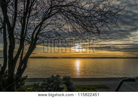 Yellow Sunset Over Puget Sound