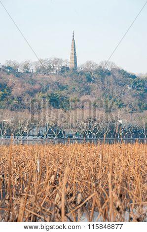 Baochu Pagoda,West Lake, Hangzhou