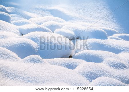 Land covered with a snow