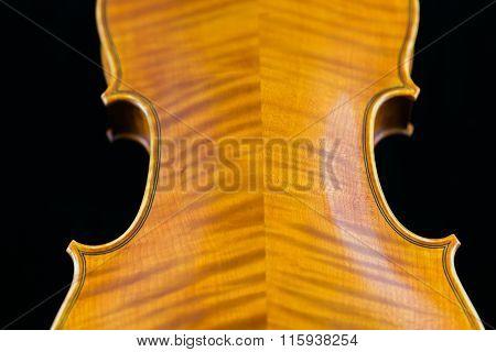 Back Side of a Violin