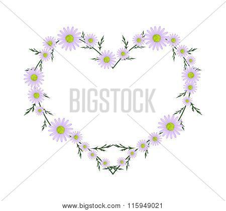 Beautiful Purple Daisy Flowers in Heart Shape