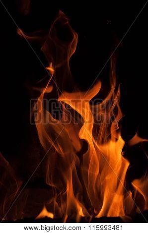 Fire flames on a black background. Blaze fire flame texture background. Close up of fire flames isol