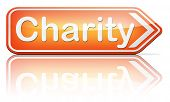 charity fund raising raise money to help donate give a generous donation or help with the fundraise gifts  poster